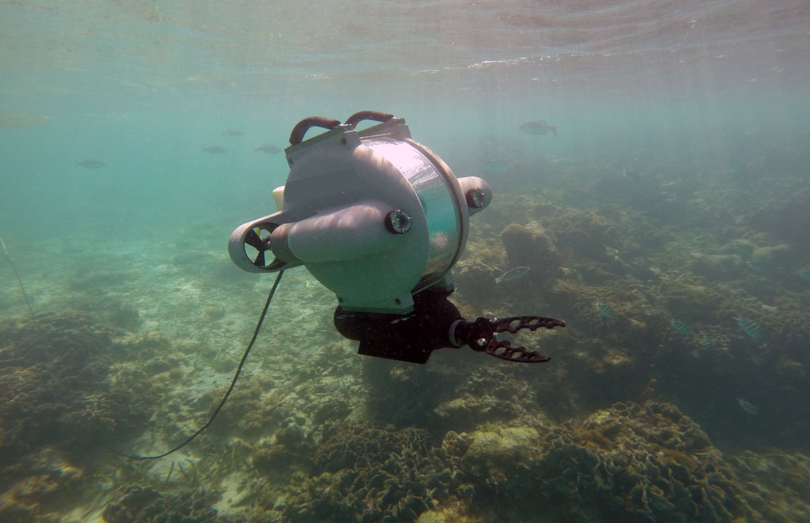 BATHY DRONE SOLUTIONS ROV